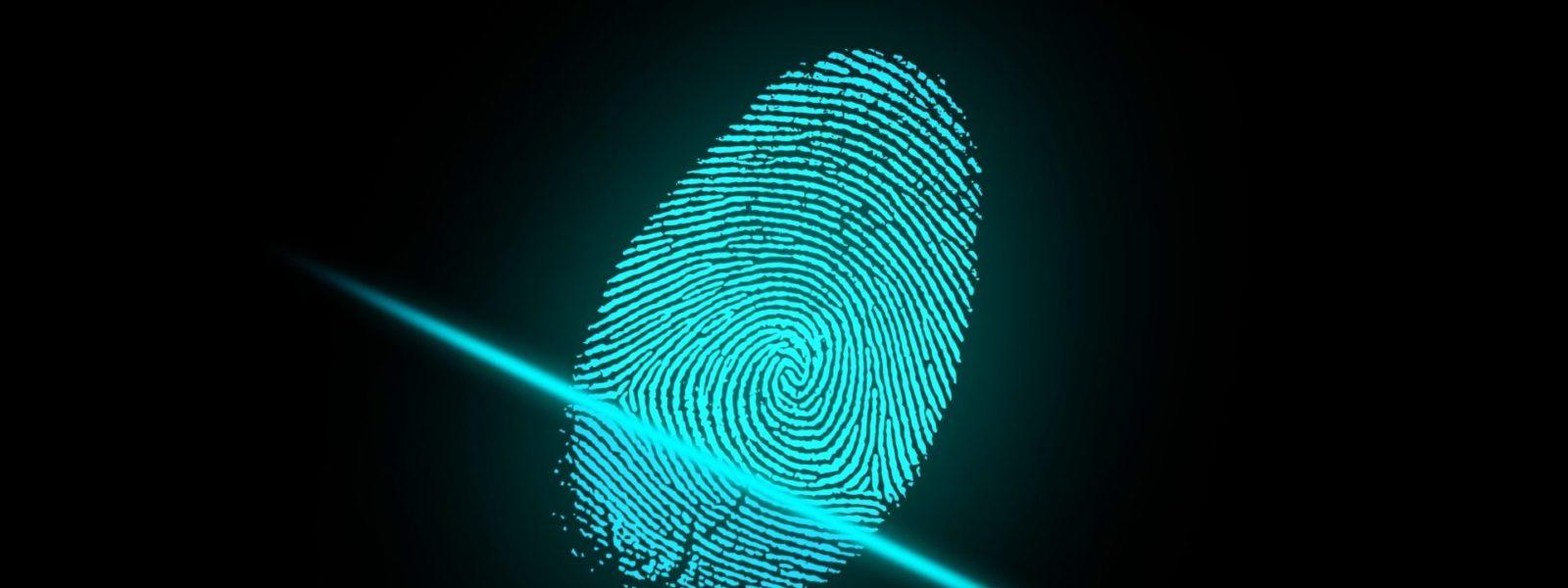 finger-2081169