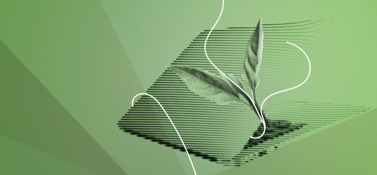 0_greenComputing